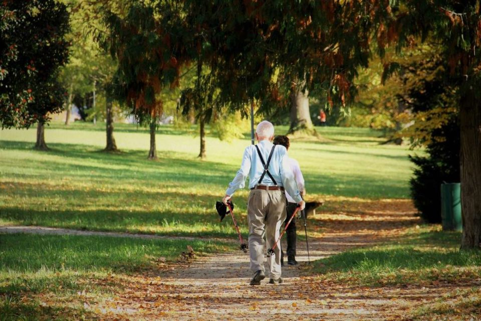 Five Best Exercises That Help Seniors Stay Fit