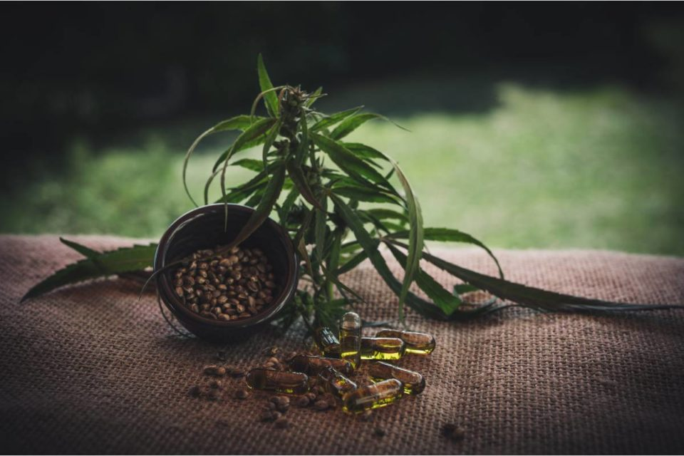 How Does CBD Impact Your Body