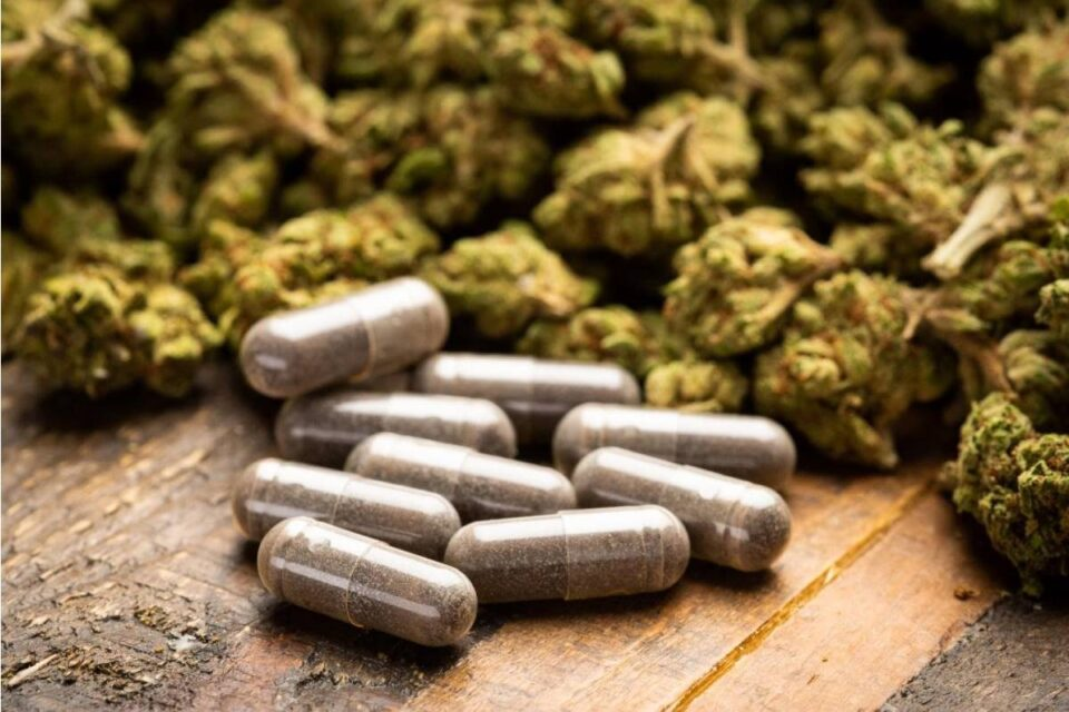 Top 5 Pros and Cons of CBD Capsules